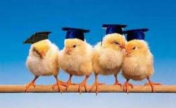 ученые выпускники как дети